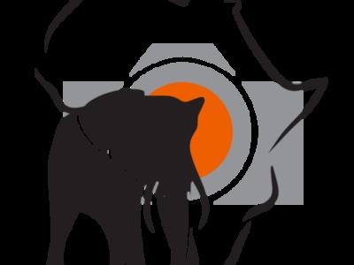 Logo African Memory