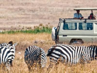 On Safari With Us