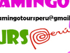 Flamingo Tours Peru