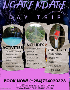 Copy Of Travel Packages Flyer Made With Postermywall