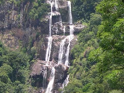 Udzungwa Mountains National Park F