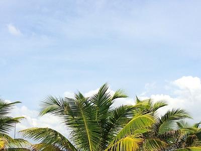 Beaches Sri Lanka