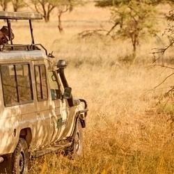 Safari With Ventures