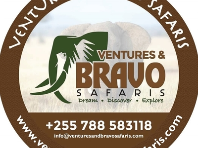 Ventures And Bravo Safaris Logo