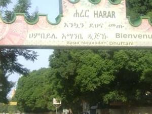 Eastern Ethiopia & Rift Valley Tour Photos