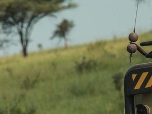 Private Serengeti-Ngorongoro Express Safari