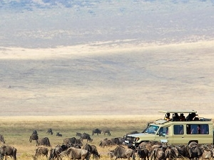 Private Tanzania Lifetime Adventure Safari Photos
