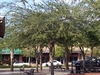 5th Avenue In The Zephyrhills Downtown Historic District