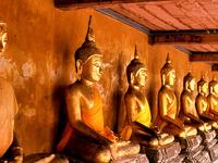 Bangkok Temple City Tour