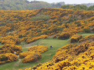 Claymore Golf Tour- Scotland