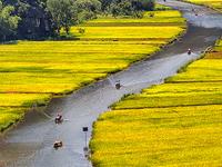 Hoa Lu Tam Coc Tour