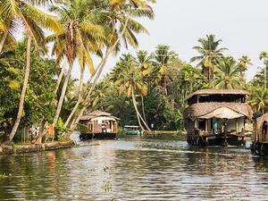Enchanting Backwaters Photos