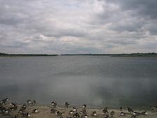 Aberton Reservoir