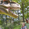 About The Dinosaurs