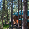 A Cabin In Truckee