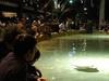 The Ray Fish Pool