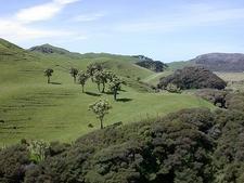 Across New Zealand