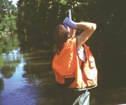 Addison Creek