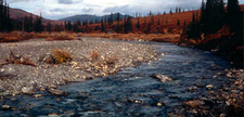 Agie River In Kobuk Valley National Park