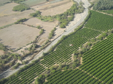 Agriculture Along Nazca River