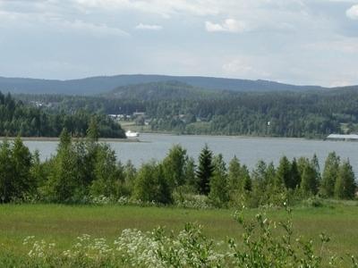 A Gulf Named Rodviken