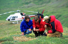 A Helicopter Tour Makes A Stop For Passengers To Explore