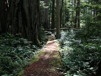 Ah-Pah Trail Interpretive