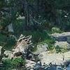 Aigüestortes y Estany de Sant Maurici National Park