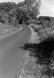 Ainapo Trail