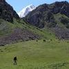 Alamedin - Hiking Anatoly Mountains
