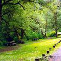 Alderwood State Wayside