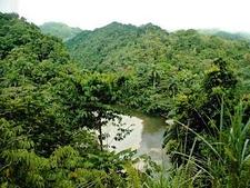 Alejandro De Humboldt National Park