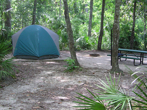 Alexander Springs Campground