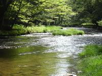 Allegheny Islands Wilderness