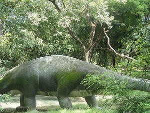 Allen Floresta Zoo
