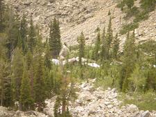 Along Garnet Canyon Trail - Grand Tetons - Wyoming - USA