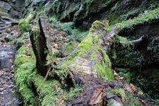 Along Roaches Trek - Peak District UK