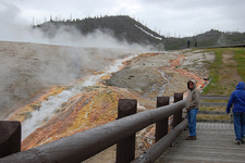 Along The Midway Geyser Basin Trail