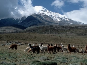 Chimborazo Climb Photos