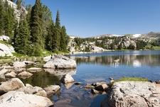 Alpine Lake Along Beartooth Highway - WY