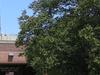 Alsip Village Hall