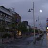 City Centre In Alta