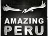 Amazing Peru Logo