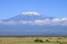 Amboseli National Park With Kilimanjaro Backdrop