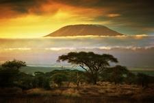 Amboseli National Park & Kilimanjaro
