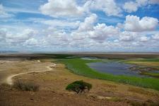 Amboseli National Park Landscape In Kenya