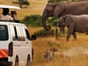 3 Days Amboseli National Park Safari