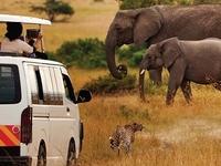 3 Days Amboseli National Park Safari