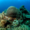 Las Islas Anambas