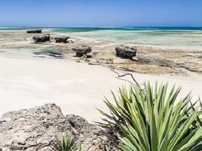 Andavadoaka Seascape In Madagascar